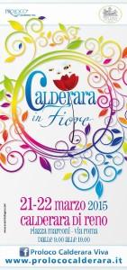 calderara in fiore-page-001
